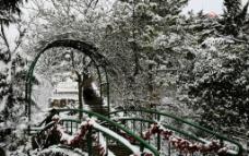 青岛雪景图片