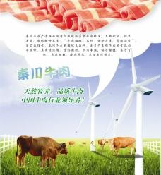 牛肉海報圖片