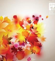 秋季红叶矢量背景素材三