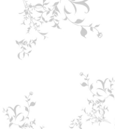 花边素材图片