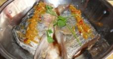 鱼头王图片