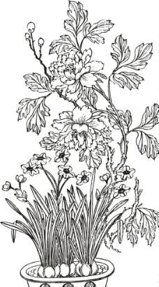 勾线盆栽图片