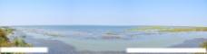 全景湖面湿地公园图片