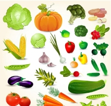圓白菜南瓜西蘭花玉米圖片