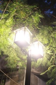 院子前的灯图片