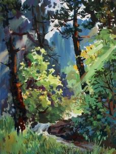 林中小溪图片