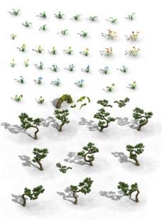 小花 手绘松树图片