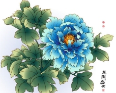 牡丹 花开盛世图片