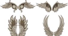 羽翼 翅膀图片