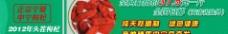 宁夏枸杞海报设计图片
