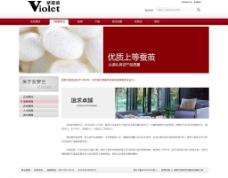 紫罗兰 公司简介图片