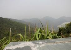 唐朗山图片