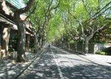 优雅思南路 街景图片