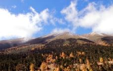 神奇的白马雪山图片