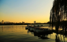 明湖夕照图片