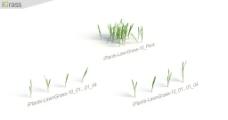 草模型图片
