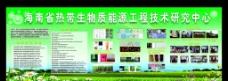 海南省热带生物图片
