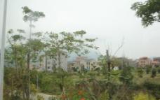 绿色农村图片