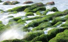 海浪 石頭 海边图片