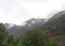 山中雾图片
