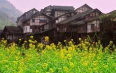 福宝古镇图片
