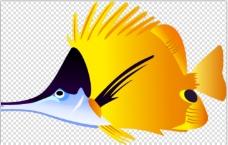 可爱的小鱼
