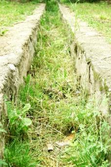 绿色的沟渠图片