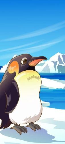 可爱动物绿色南极企鹅图片