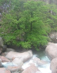 雨中的崂山北九水图片