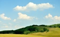 绿染坝上草原图片