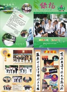 绿杨封面图片
