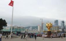 香港紫荆花广场图片