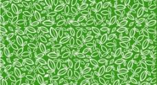 矢量茶叶树叶图片