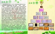 茶叶企业简介和荣誉图片