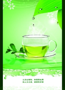 绿色清新茶文化图片