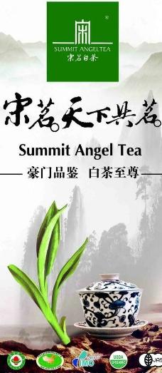 宋茗白茶海报图片