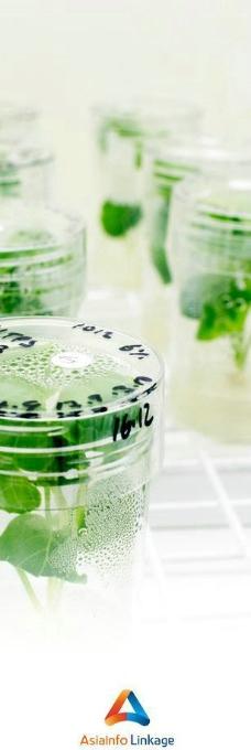 环保 绿色 植物图片