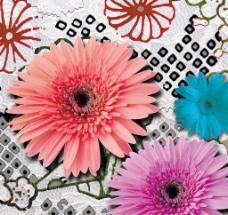 花朵 装饰画图片