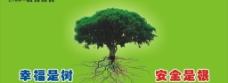 幸福是树安全是根图片