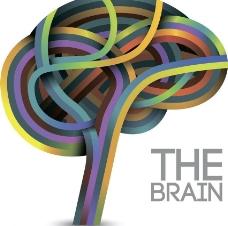 大脑思维树图片