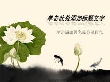 中国风 鱼莲嬉戏