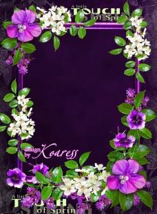 鲜花相框图片