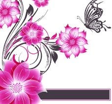 时尚花卉蝴蝶背景图片