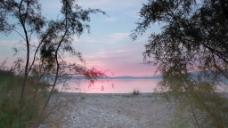 加利利海的树在日落通过4股的录像 视频免费下载