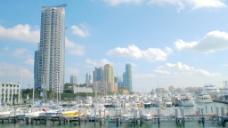 迈阿密港的股票视频影片箱 视频免费下载