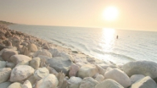 在石滩股票视频在海里游泳 视频免费下载