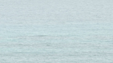 美丽的蓝色海洋从百慕大群岛股票视频海岸 视频免费下载