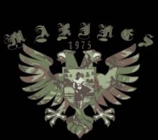 迷彩鹰图片