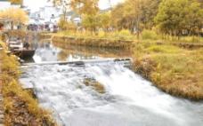 风景秋天图片