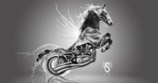 动物摩托图片